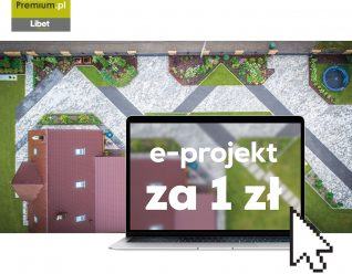 Libet - e-projekt za 1 zł